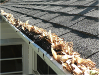 Clogged Gutters | The Gutter Guys