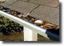 The Gutter Guys clean clogged gutters to protect your home from water damage. 1-800-GUTTER-1